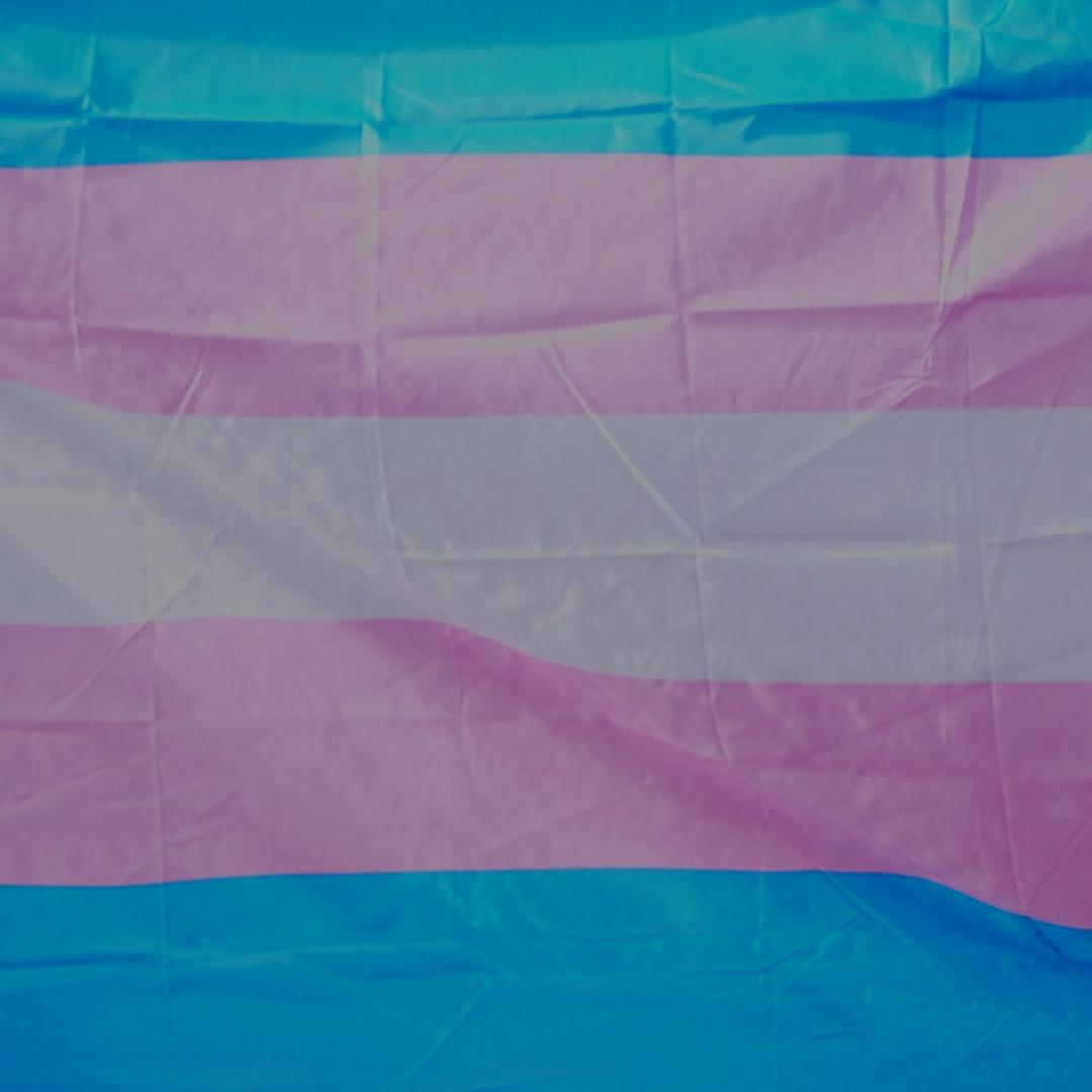 transgender awareness month